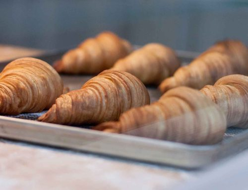 Best Avada Bakery products of 2019